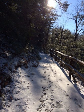 Mohonk Mountain House: One of the many beautiful trails around the hotel.