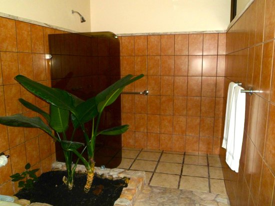 Arenal Manoa Hotel: Shower