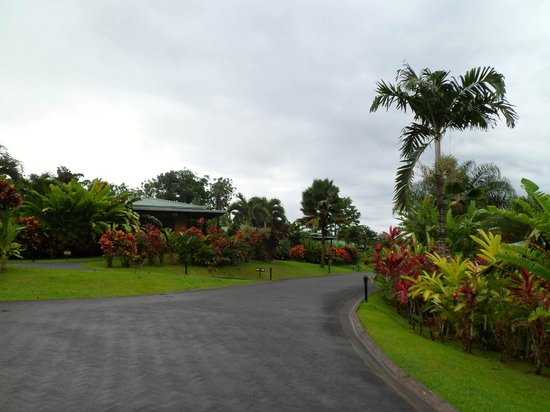 Arenal Manoa Hotel: Walking through the property
