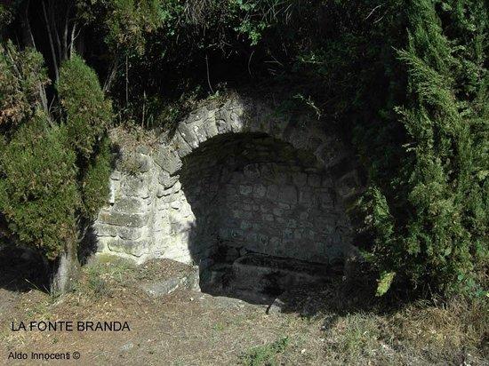 Castello di Romena: Fonte Branda