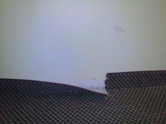 Econo Lodge Inn & Suites Newton : Ripped carpet