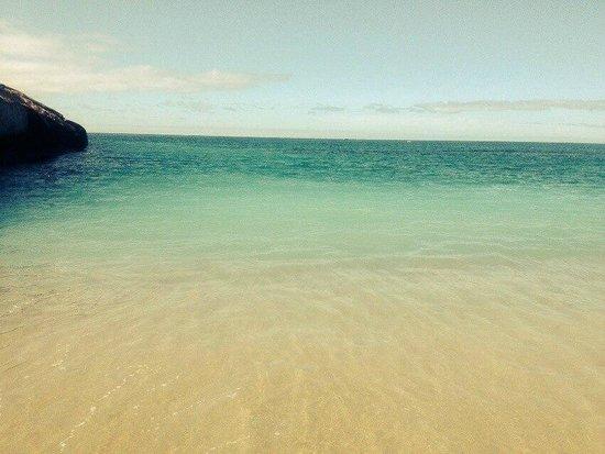 Sheraton La Caleta Resort & Spa, Costa Adeje, Tenerife : Playa del Duque