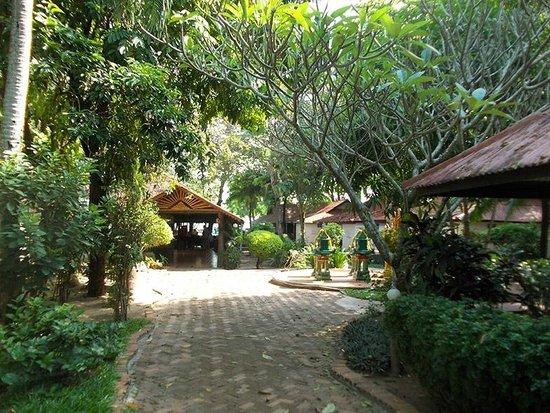 PGS Hotel Sandy Resort : Jardin de l'hôtel
