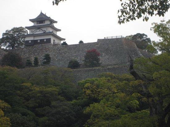 Marugame Castle: 美しい石垣