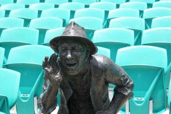 Sydney Cricket Ground: Flies the only friends you've got