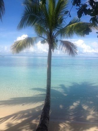 Leleuvia Island Resort: Clear waters