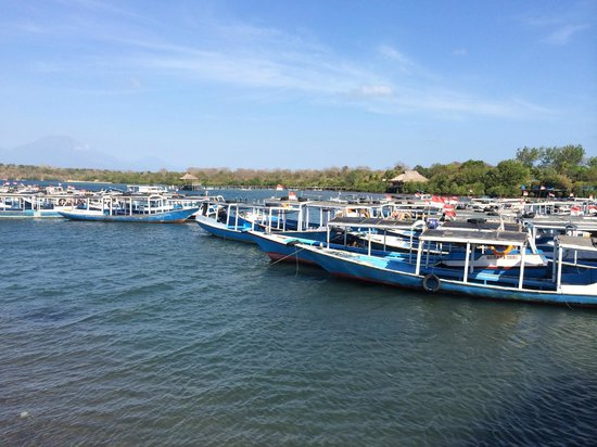 Mimpi Resort Menjangan: boats at mimpi harbour
