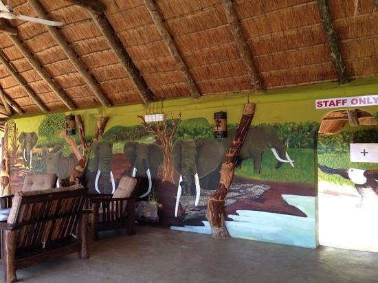 Olifants River Safaris Day Trips: stunning wildlife murals