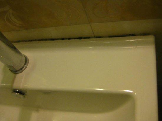 Rising Dragon Legend Hotel: mold on sink