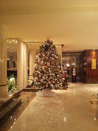 Hotel Leon D'Oro : Hall