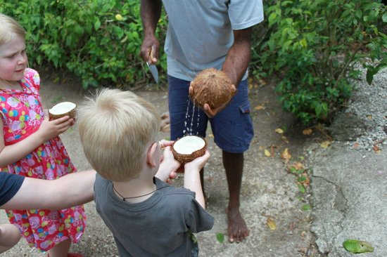 Paradise Cove Resort: Fresh coconuts with the kids