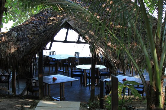 Paradise Cove Resort: Dining down near the water