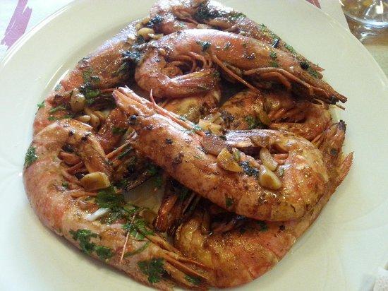 Restaurante Sol & Tapas: Paella