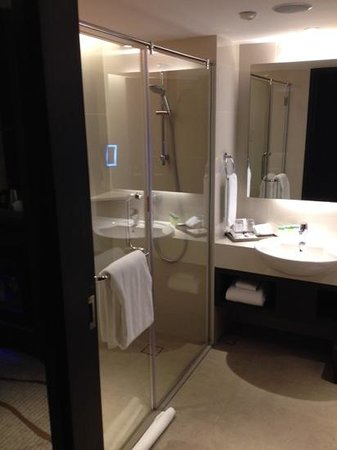 Sama-Sama Hotel KL International Airport: Sink and shower