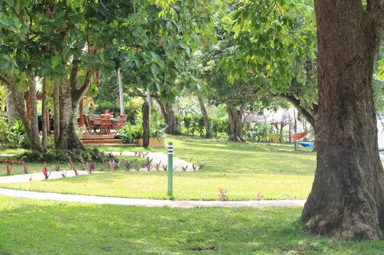 Cocomo Resort : Well maintained grounds