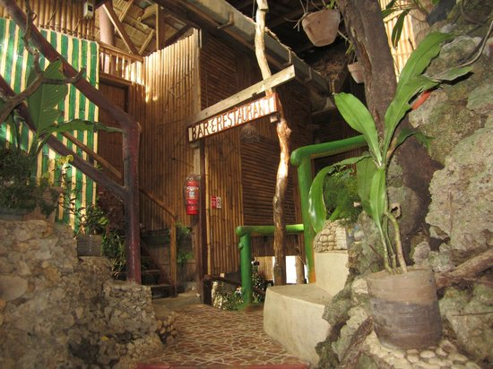 Spider House Resort: Reception and stair to room #1