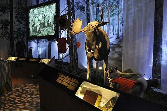 ‪‪Riihimaki‬, فنلندا: The new permanent exhibtion. Photo: Ilja Koivisto/The Hunting Museum of Finland‬