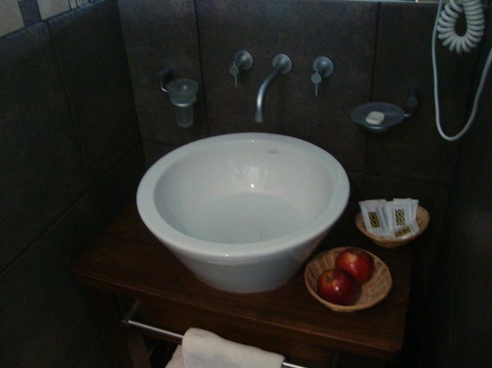 PuduLodge Hosteria Patagonica: The sink in the room