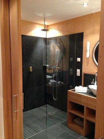 Hotel Adler Balance : bagno