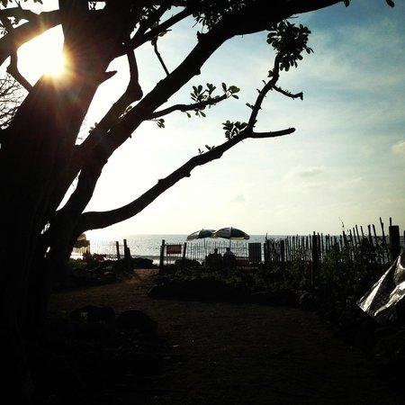 Majahua Hotel Selva: Vista desde el club de playa
