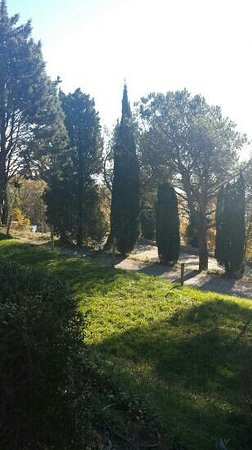 Hotel La Cima Trasimena : parco