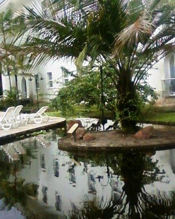 Tropical Manaus Ecoresort: Areá próximo de onde é servido o almoço e jantar.