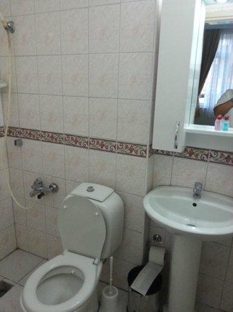 Ozmen Pension: туалетная комната