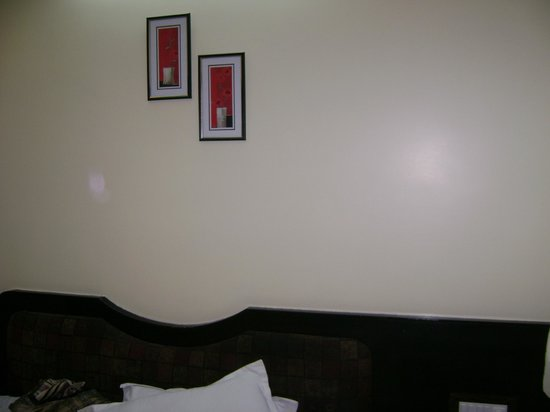 Suhashini Palace: Wall in the room