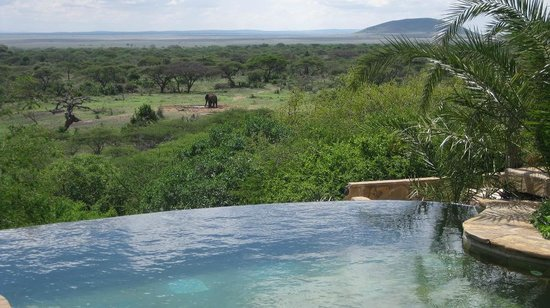 Great Plains Conservation ol Donyo Lodge : Pool mit Aussicht