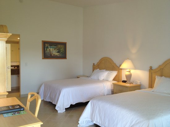 Dolphin Key Resort: Double room
