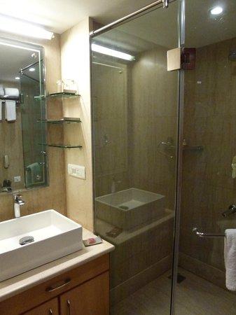 The Theme, Jaipur: Bathroom