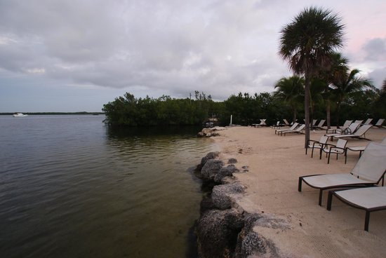 Hampton Inn Key Largo: Beach with easy access