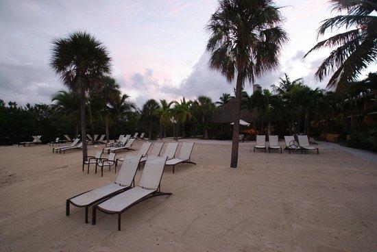 Hampton Inn Key Largo: Beach