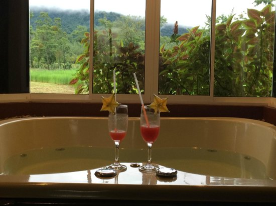 Hotel Magic Mountain: Welcome fruit drink and a view