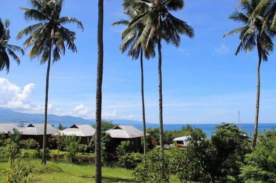 Thalassa PADI Dive Resort : Zeezicht vanuit ons huisje / appartement.