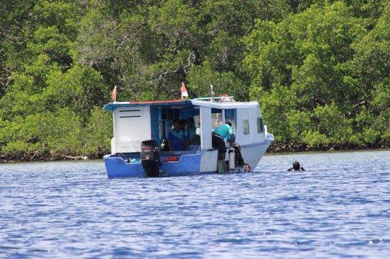 Thalassa PADI Dive Resort : Zeer behulpzame en bekwame instructeurs en crew, ook op de boot...
