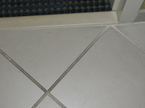 Holiday Inn Express State College, Williamsburg Square: Dirty floor, white grout is black
