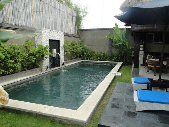 Bali Rich Luxury Villa : Private Pool