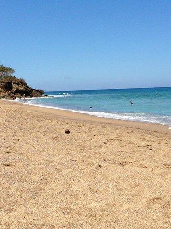 Punta Taino Guest House: Sandy Beach