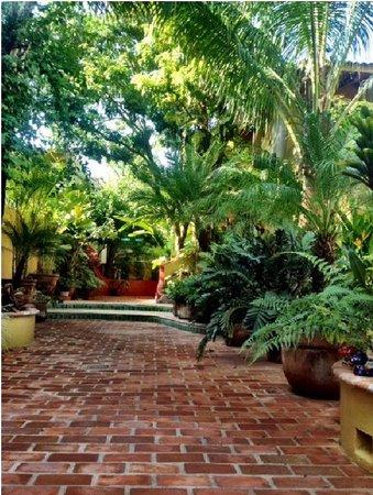 Roberto's Bungalows : Roberto's patio greeting