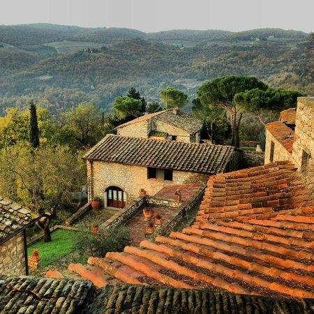 Castello Vicchiomaggio : vista dal giardino