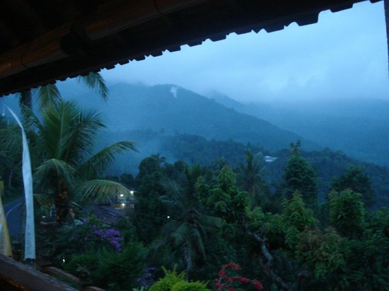 Lumbung Bali Cottages and Spa: Vue