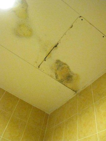 Malibest Resort: soffitto del bagno
