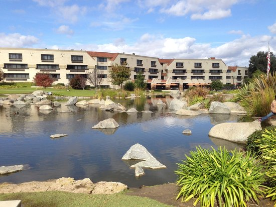 Courtyard San Diego Rancho Bernardo : I Love Visiting The Community Park Located Next To The Courtyard by Marriott Rancho Bernardo. Gr