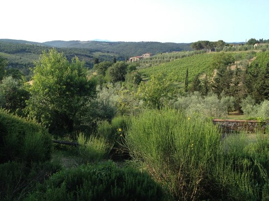 Relais Vignale: View from breakfast terrace
