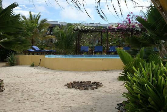 The Zanzibari: Main pool