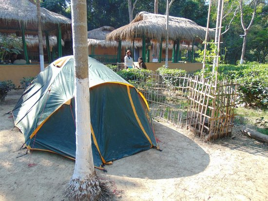 Nature Hunt Eco Camp, Kaziranga : Outside Tent
