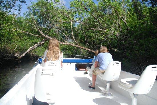 Everglades National Park Boat Tours: A look at the boat