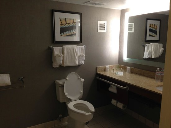 Holiday Inn Atlanta - Perimeter / Dunwoody : Bagno