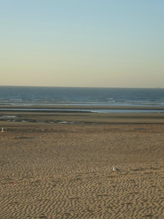 Hotel Lehouck : zicht op zee en strand